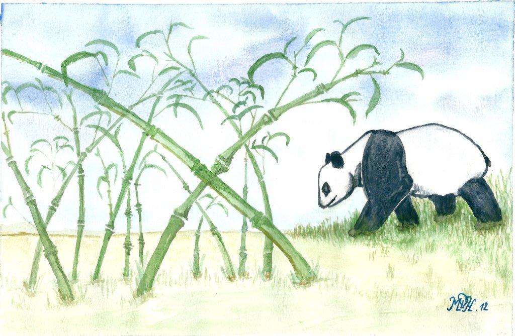 """Aquarelle n°5 - """"Panda"""""""