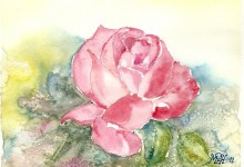 "Aquarelle n°8 - ""Rose"""