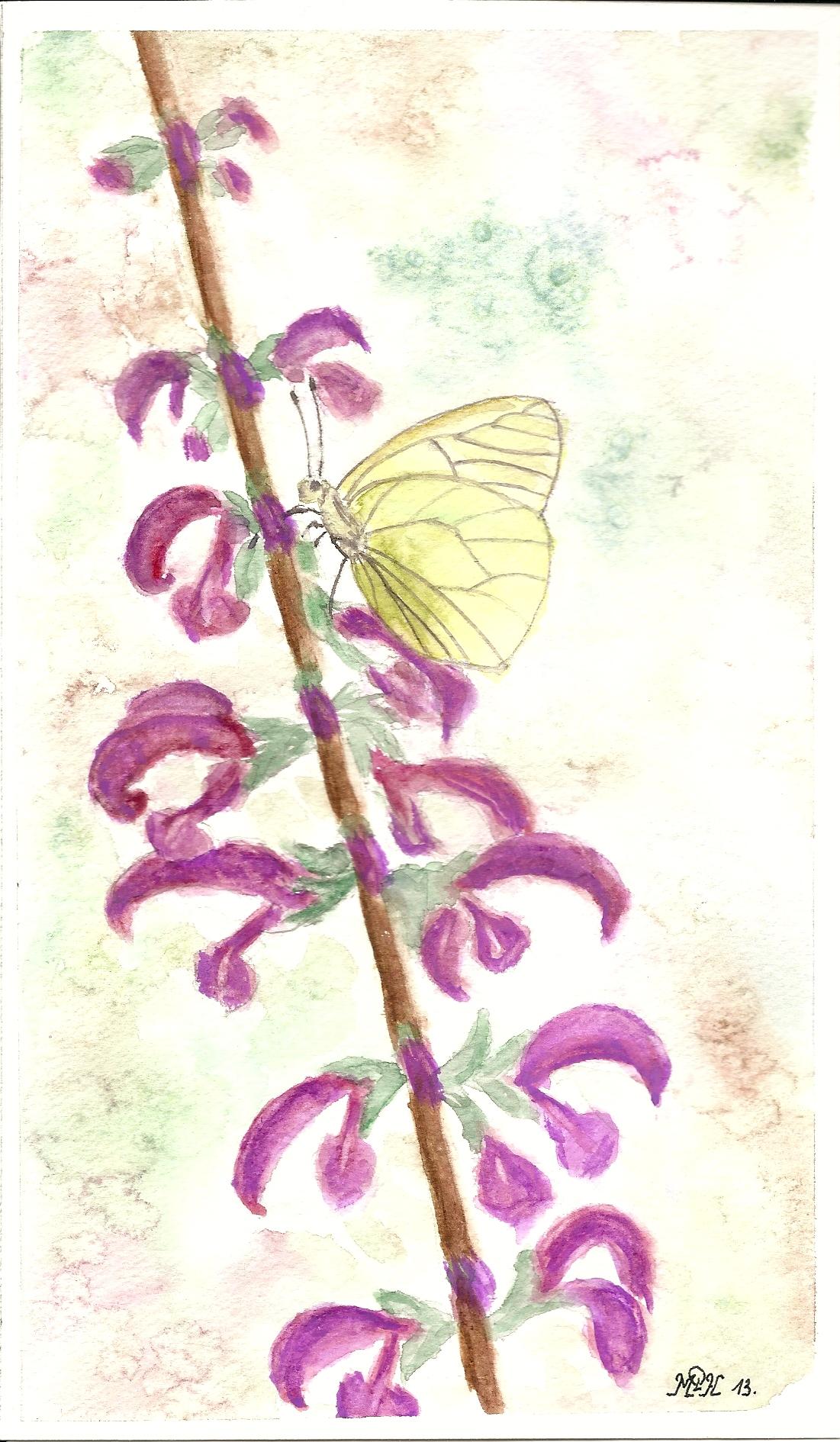 """Aquarelle n°29: """"Papillon"""""""