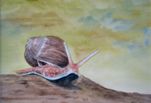 "Aquarelle n°123: ""L'Escargot"""